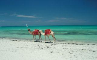 Tunisia - Djerba